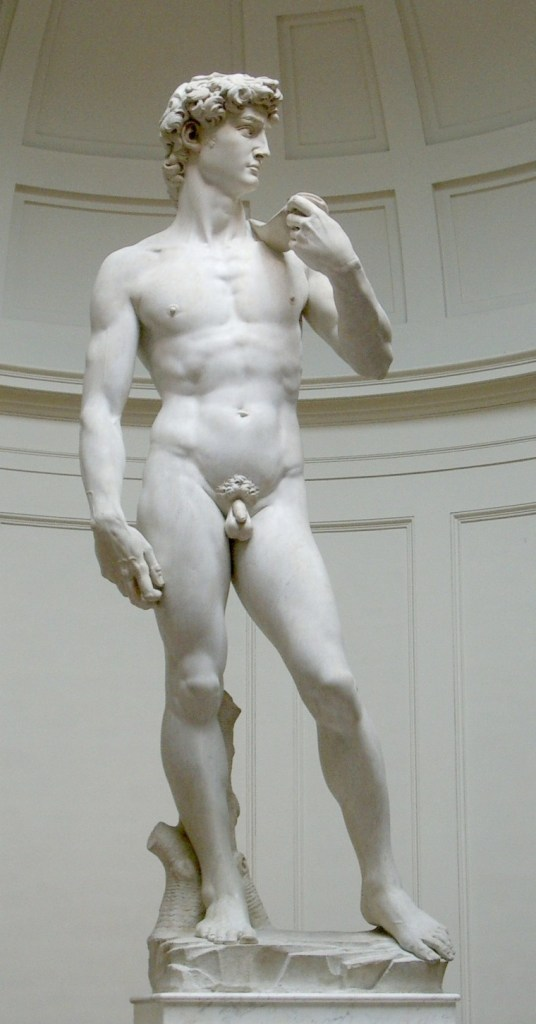 Michelangelo Bonarroti, David, 1501-1504, Galleria dell'Accademia, Firenze